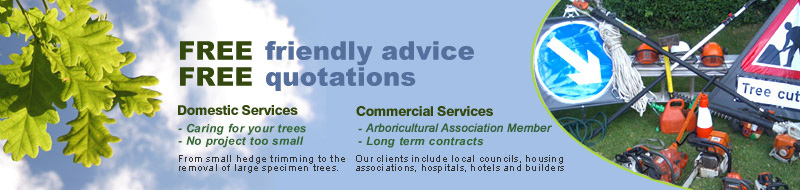 Tom Rodgers Tree Services